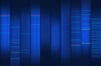 SilverSpider DNA